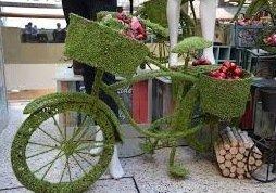 The Green Team! Cheltenham Plays Spot the Bike…